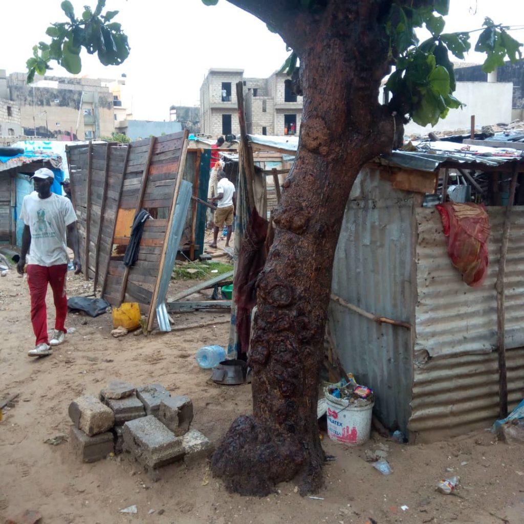36665746-32659492-1024x1024 Destruction d'un ghetto à Dalifort (Photos)